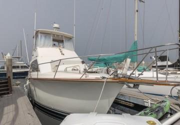 Terrapin 38' Ocean 1984