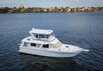 Believe It Or Not 45' Seahorse 2002
