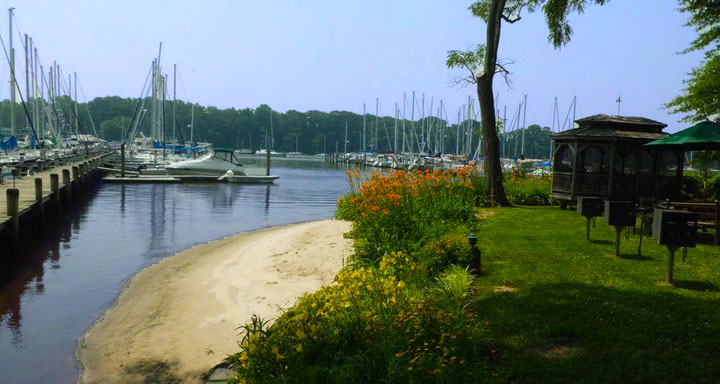 Sailing Associates Inc in Georgetown, MD