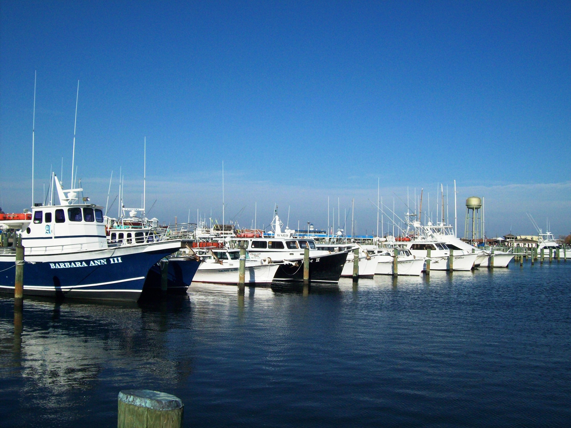 Somers Cove Marina in Crisfield, MD