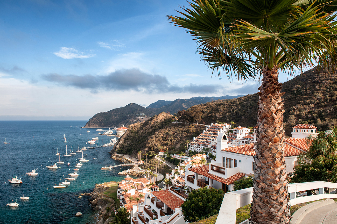 Top California Yacht Charter Destinations Right Now,Vital Proteins Collagen Peptides Before And After Cellulite