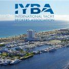 IYBA-thumbnail