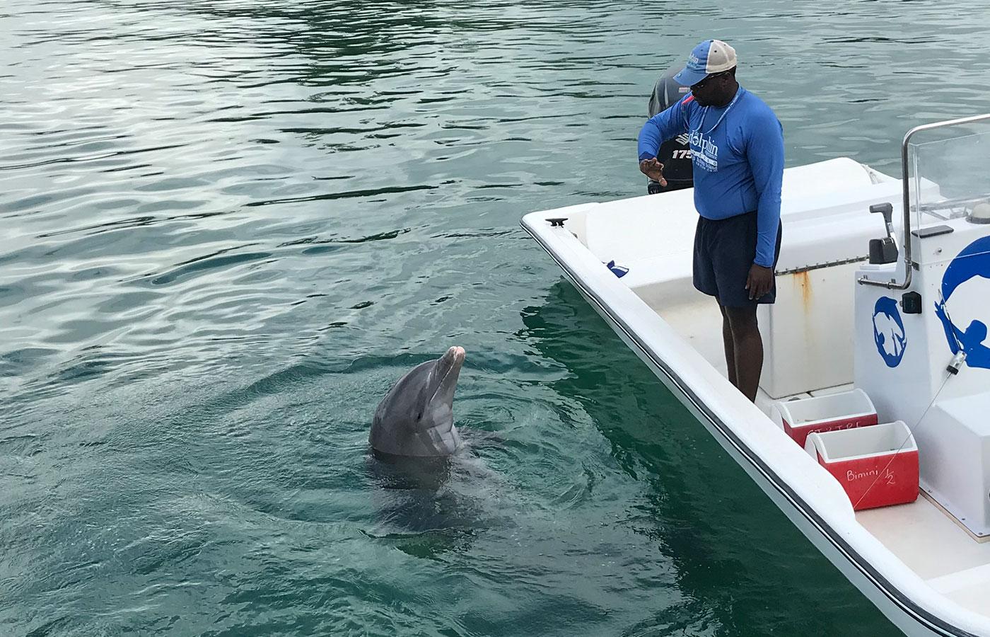 Bahamas Rendezvous 2019 [Day 3]